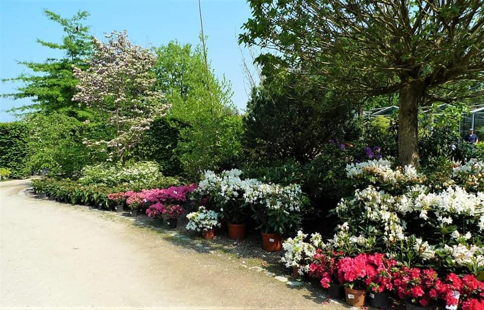 Les Jardins Idée Ô