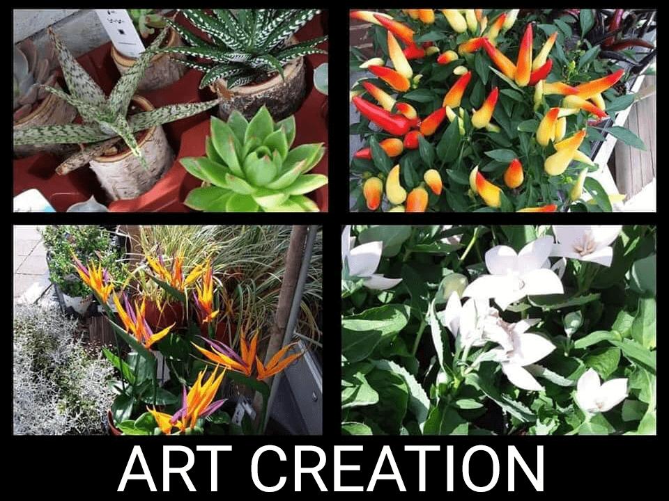 Art création